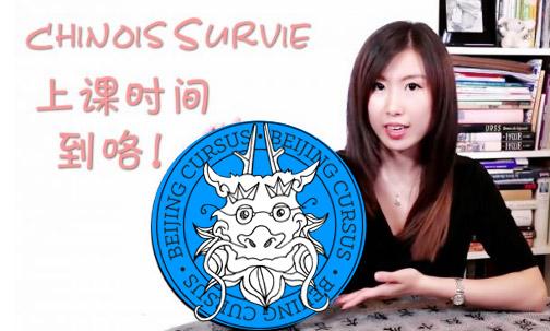 Cours de chinois en individuel ou collectif par webcam !