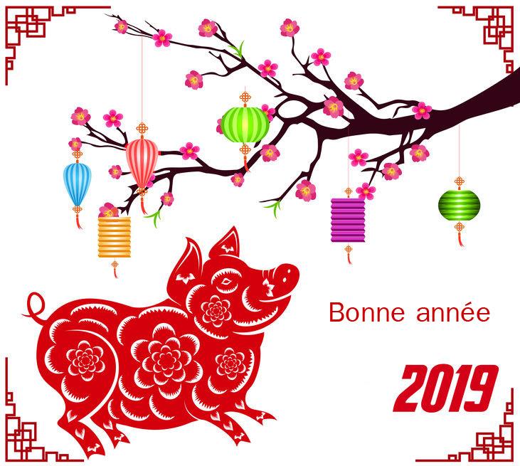 Nouvel An chinois 2019 : une année placée sous le signe du cochon
